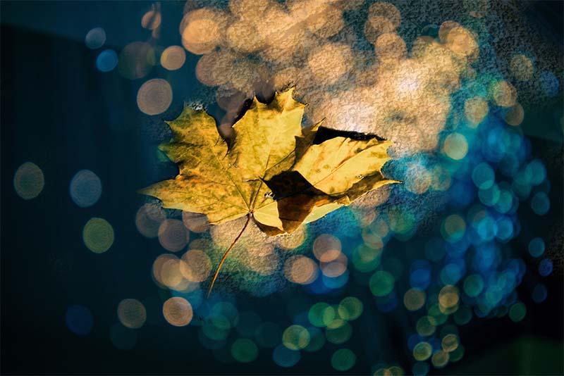 Foto meervoudige belichting natuur