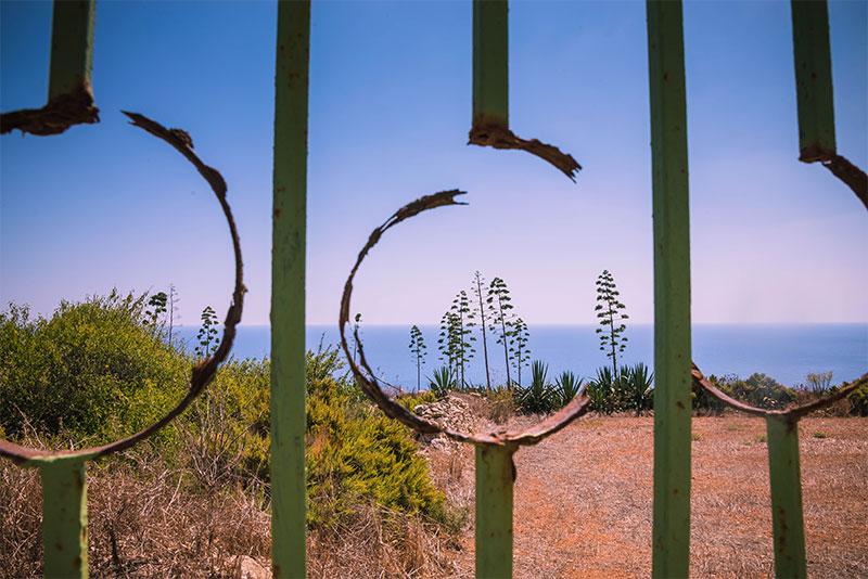 Doorkijkje door hek naar bloeiende Agave