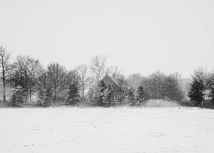 Huis met bomenrij in de sneeuw